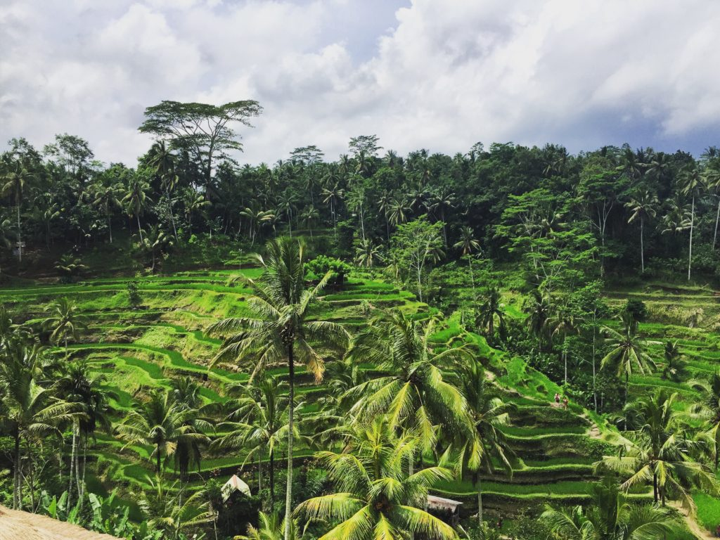 Top 10 Bali Things To Do