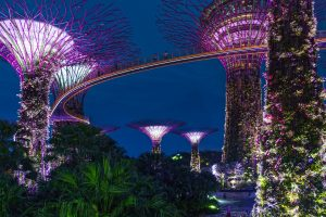 Itinerary: Singapore In 3 Days