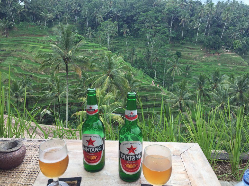 The PERFECT Bali Itinerary