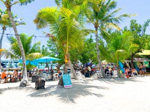 traveling blondie Islamorada Florida Keys Robbies